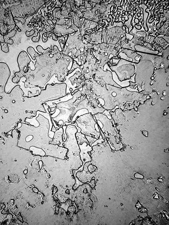 Совершенно невероятные фото слез под микроскопом. Вы не поверите, но все слезы – разные!