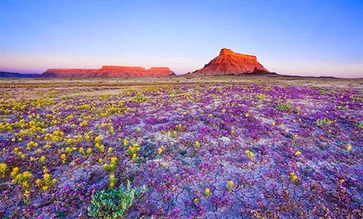 10 чудесных явлений природы – такое просто невозможно придумать и представить!