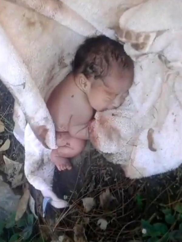 Мужчина нашел в парке малыша, замотанного в полотенце! То, что случилось потом, заставит вас расплакаться!