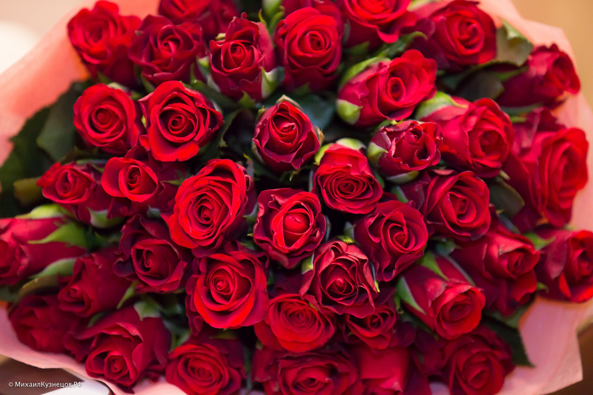 А какие цветы вам соответствуют по знаку Зодиака, принося любовь, удачу, благополучие? Не знаете? Читаем!