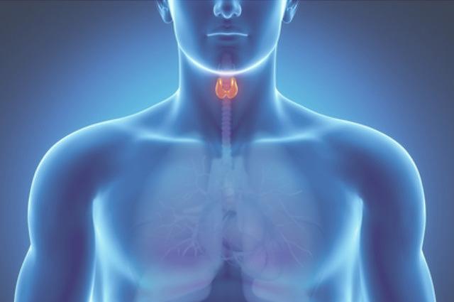 Специальная смесь для лечения и налаживания нормальной работы Щитовидной железы
